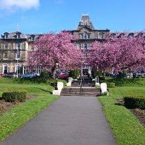 Palace Hotel Buxton Cherry Blossom