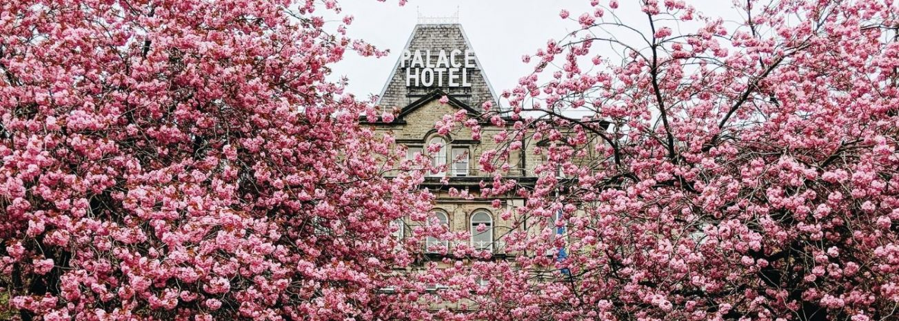 The Palace Hotel Buxton Cherry Blossom